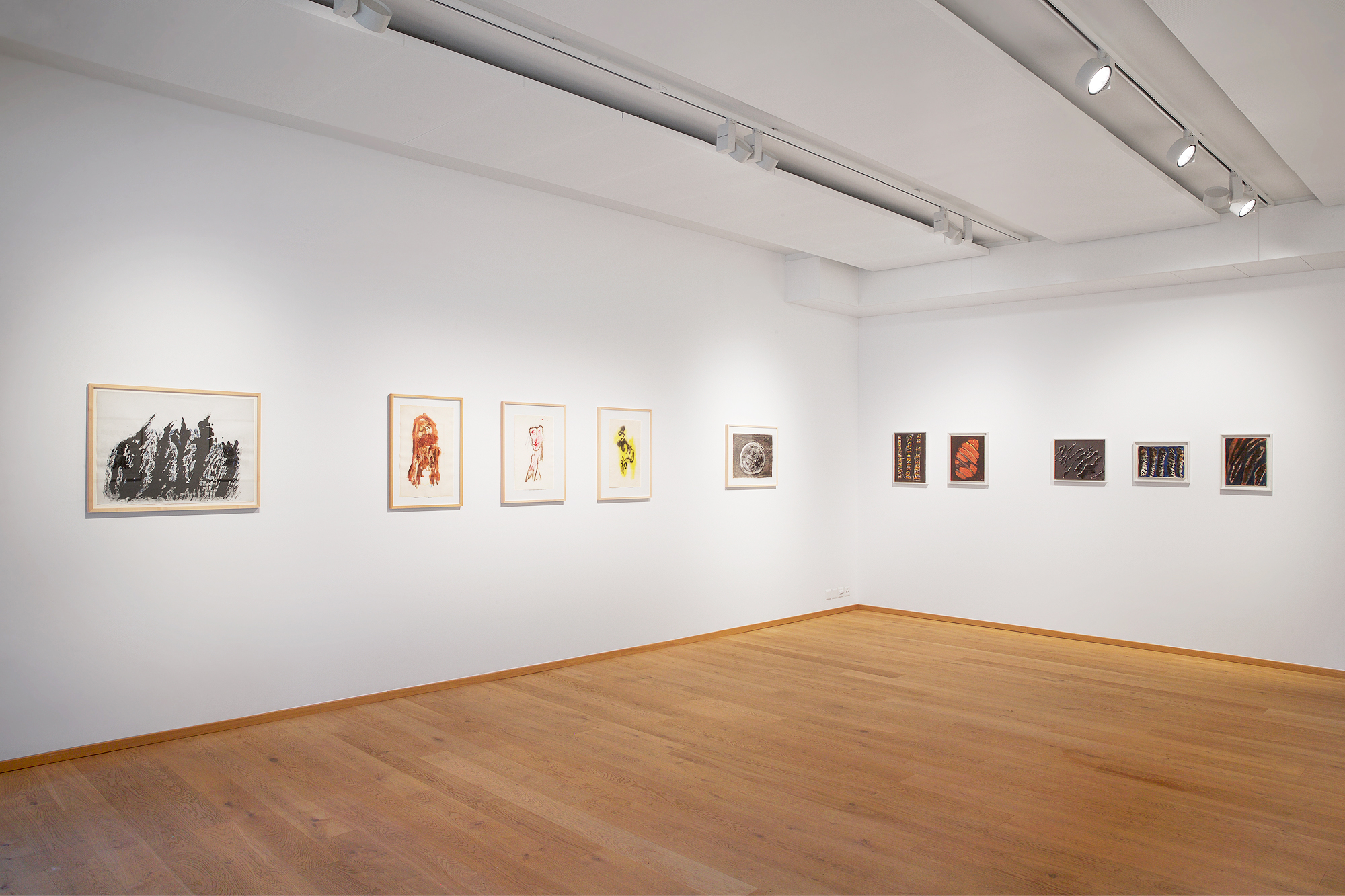 Installation view Michaux